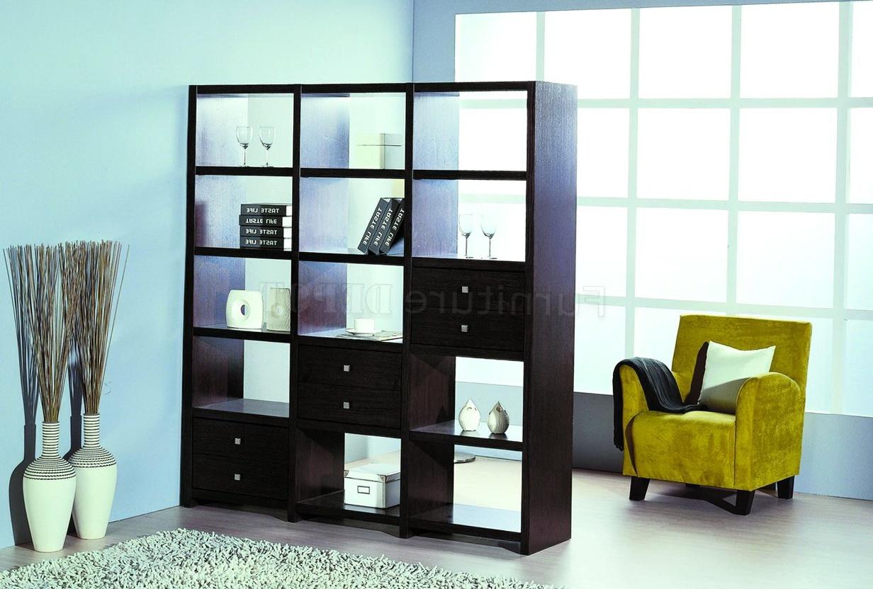 Modern Bookshelf Room Dividers Home Design Ideas