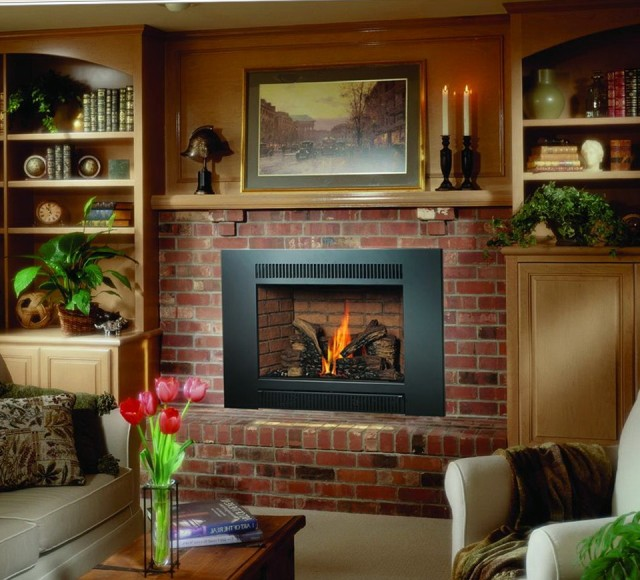 Gas Stove Fireplace Insert