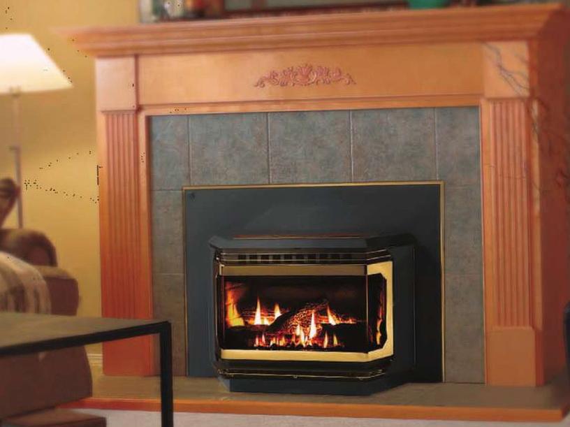 Gas Fireplace lennox gas fireplace : Lennox Gas Fireplaces Reviews | Home Design Ideas
