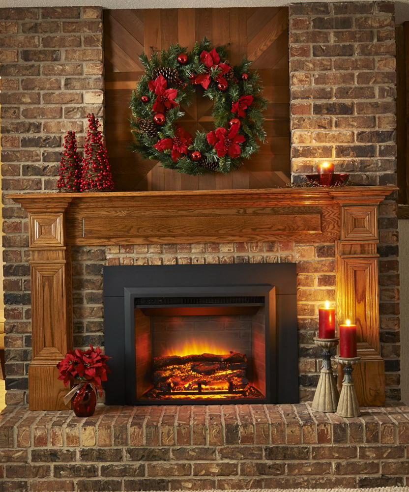 Electric Outdoor Fireplace Insert Home Design Ideas