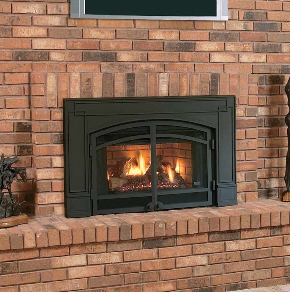 Cast Iron Fireplace Doors Home Design Ideas