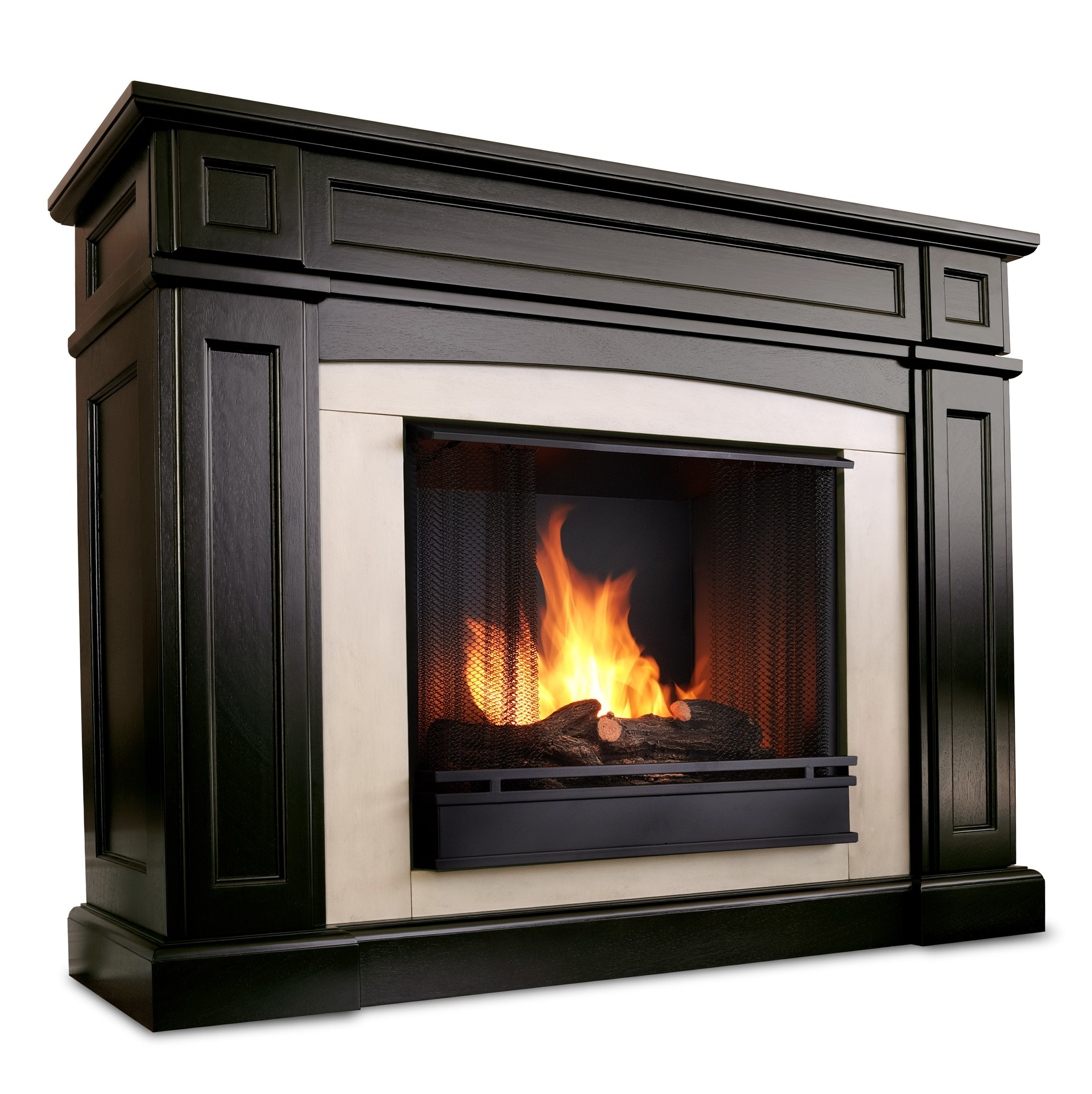 Ventless Propane Fireplace With Blower Home Design Ideas