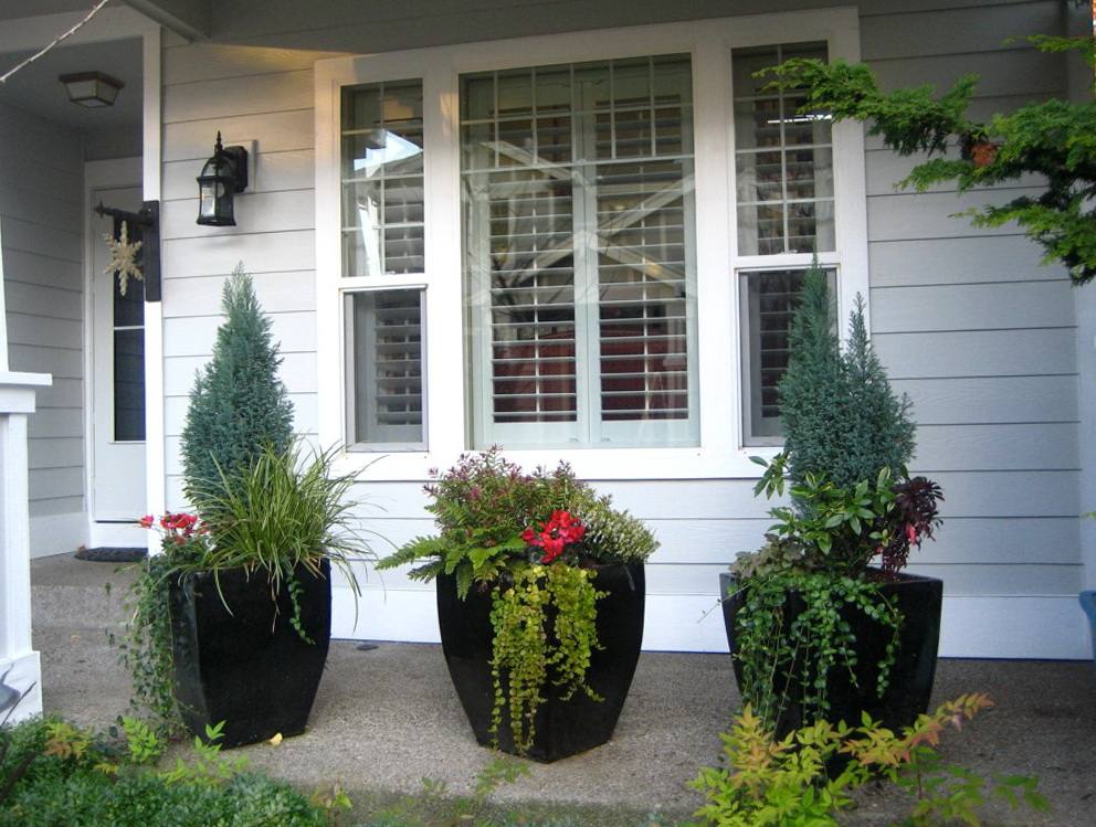 Winter front porch plants home design ideas for Front porch landscaping plants