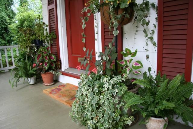 Winter Front Porch Plants Home Design Ideas