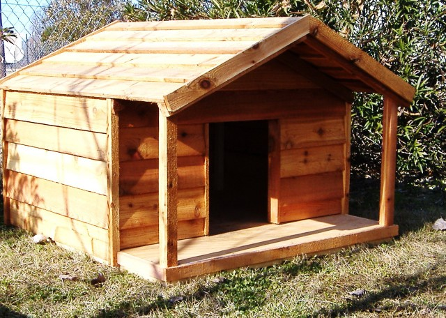 Large Dog House With Porch Home Design Ideas