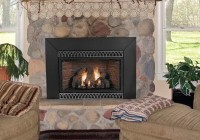 Vented Natural Gas Fireplace Inserts